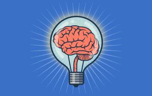 neurociencia la exploracin del cerebro