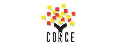 Comunicado COSCE sobre la creación de un nuevo Ministerio de Universidades