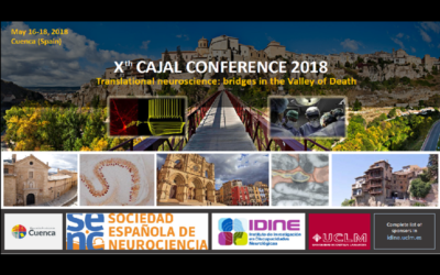 X Cajal Conference: Translational Neuroscience: Bridges in the Valley of Death