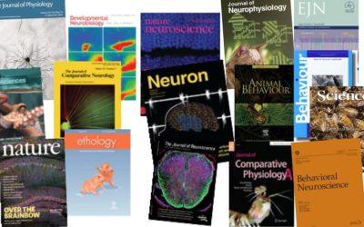 Envía tus portadas en revistas científicas