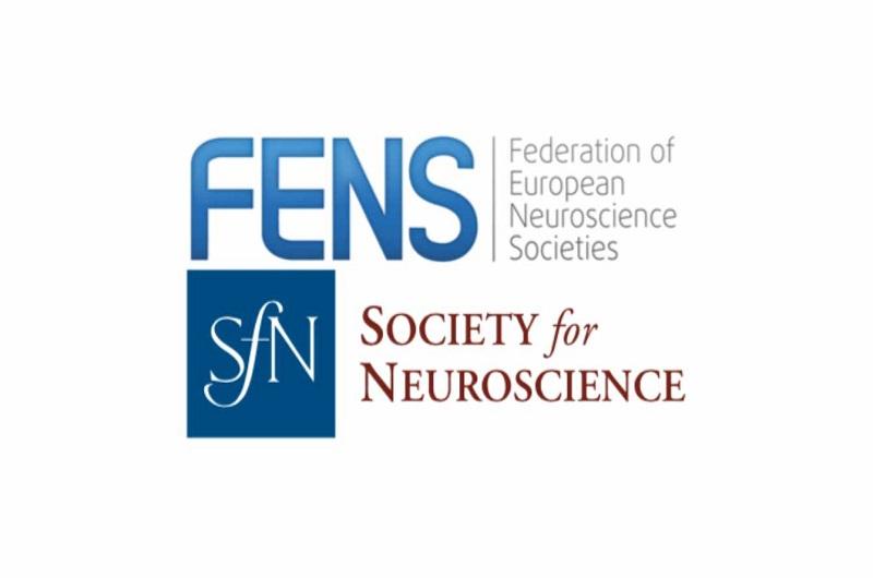 Joint FENS / SfN statement on the treatment of Nikos Logothetis
