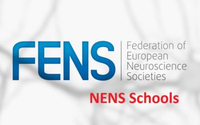 FENS and IBRO-PERC Support for Graduate Courses in 2019