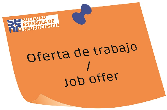 3-year Predoctoral Scholarship in Alicante