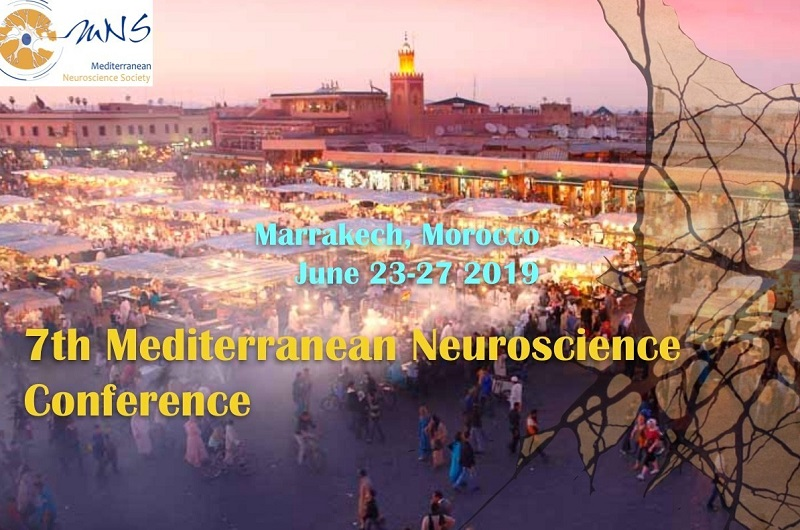 7th Conference of the Mediterranean Neuroscience Society: participate!