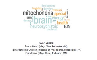 """EJN Special Issue on """"Powering the brain in Health and Disease"""""""