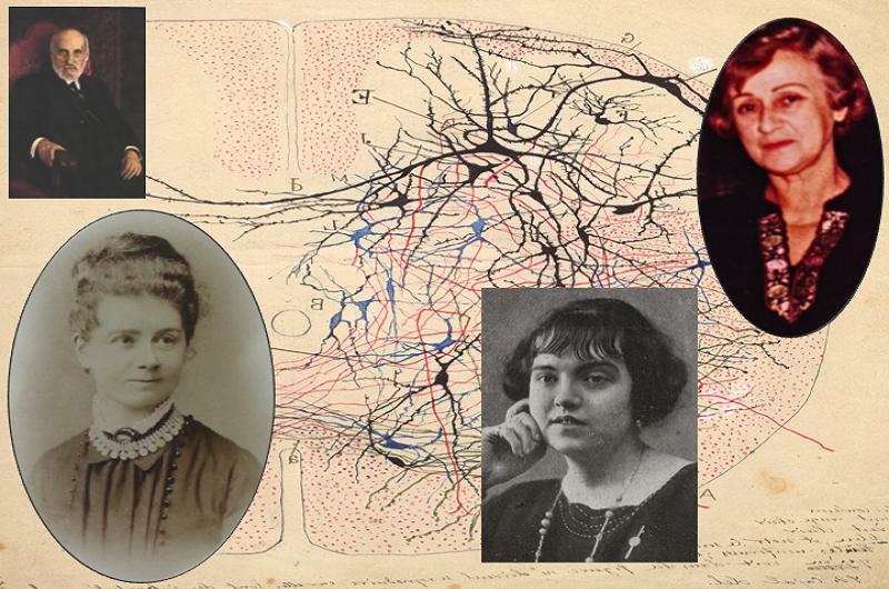 Las neurocientíficas que investigaron con Cajal salen del olvido