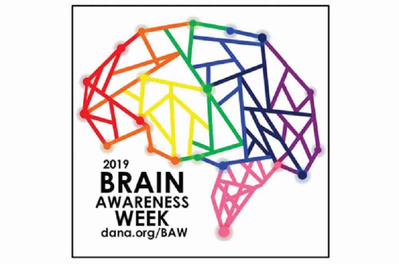 Manda imágenes sobre la Semana del cerebro: 11-17 de Marzo de 2019