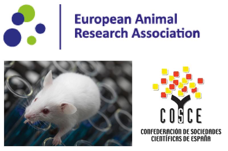 Progreso en el acuerdo de transparencia en investigación animal