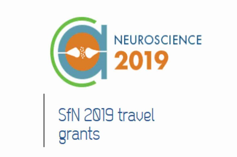 FENS is offering 10 travel grants of  € 2000  each to attend SfN-2019 in Chicago