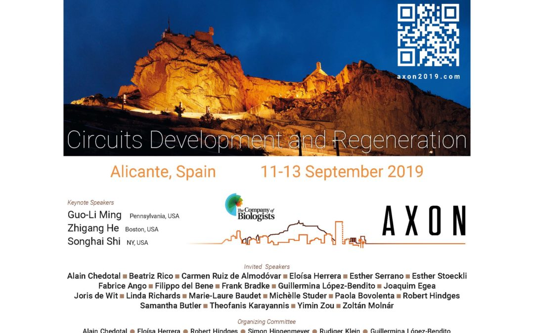 Register to the 3rd edition of the AXON-Meeting in Alicante!