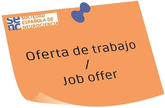 2 PhD positions available at the Bioengineering Institute of U. Miguel Hernandez