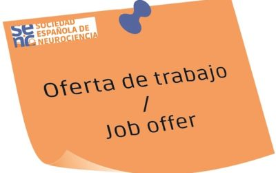 2 Postdoctoral researcher positions at the University  Miguel Hernández