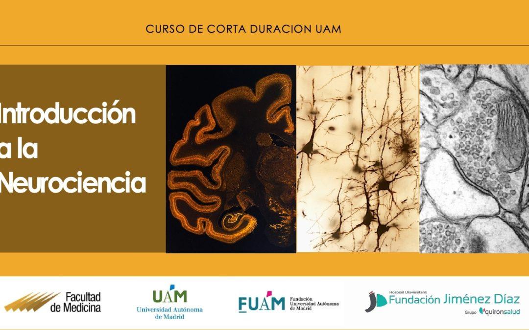 Curso de Corta Duración: Introducción a la Neurociencia (UAM)