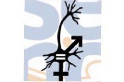 11 Febrero, Día Internacional de la Mujer y la Niña en la Ciencia