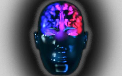 "Dump brain ""dimorphism"""